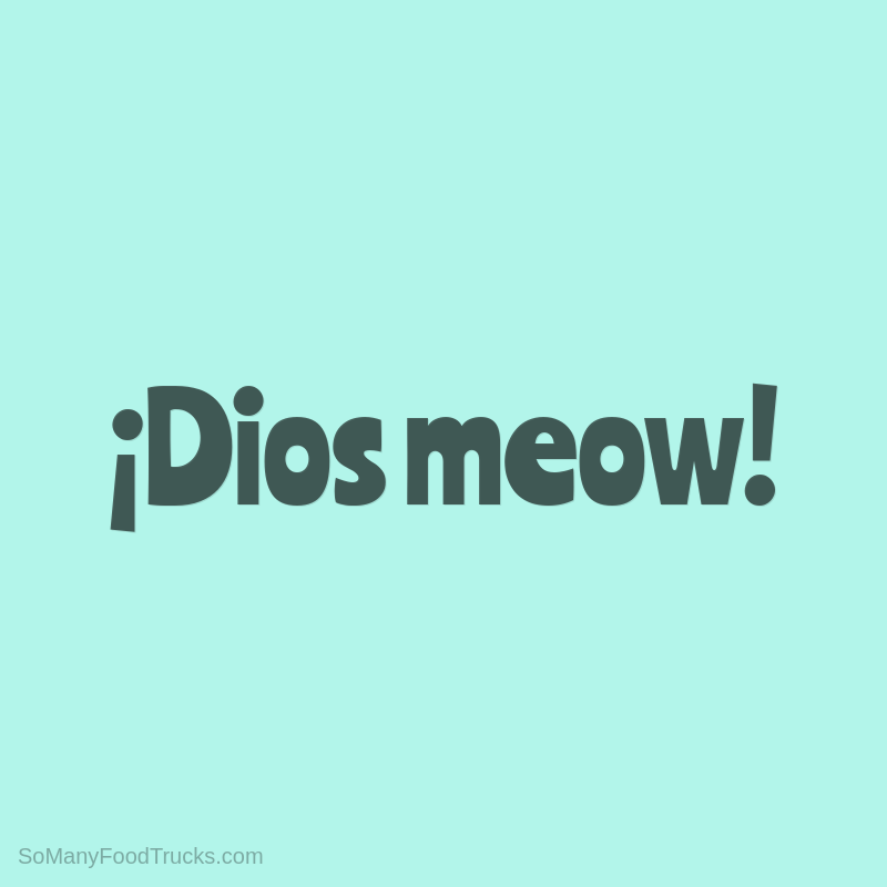 ¡Dios meow!